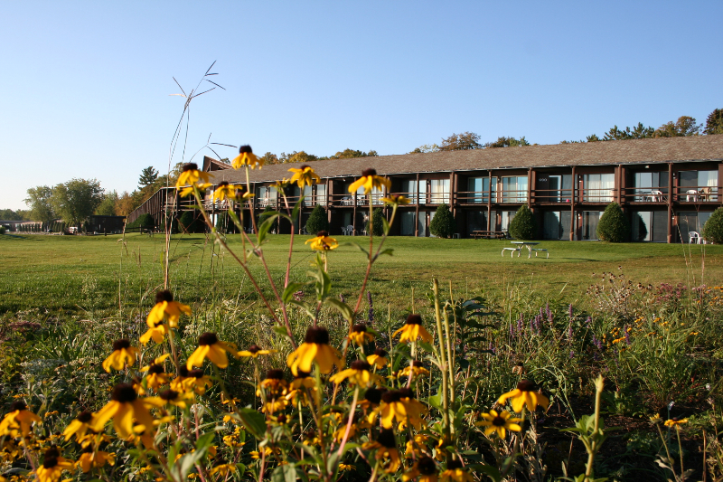 lodge-apts-with-flowers2011