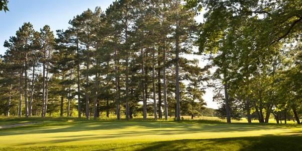 2017 Breezy's Diamond Golf Package
