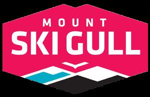 ski-gull-logo