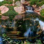 Antlers Pond